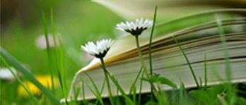 encyklopedia-min